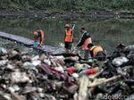 Aksi Petugas Bersih-bersih Sampah di Kanal Banjir Timur