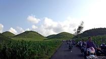 Foto: Bukit Teletubbies dari Gunungkidul