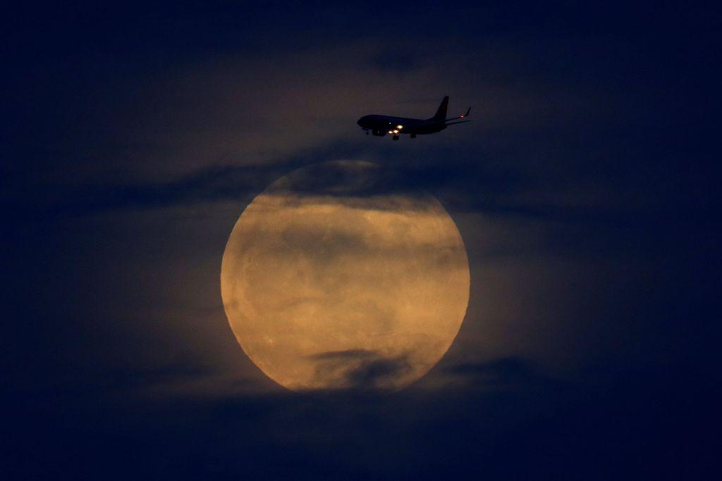 Permulaan gerhana Bulan total nampak terlihat di sejumlah negara di dunia, khususnya kawasan Amerika. Mike Blake/Reuters.