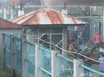 Video LP Biaro di Sumatera Barat Terbakar!