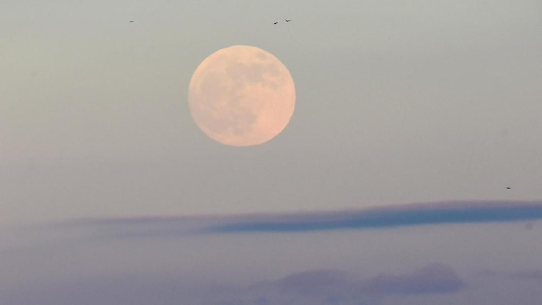 Ada Gerhana Bulan di 17 Juli, Kemenag Ajak Umat Islam Salat Khusuf
