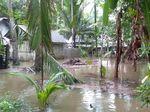 Banjir di Kebumen Surut, Warga Mulai Beraktivitas Kembali