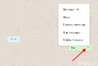 Tampilan WhatsApp web