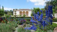 Liburan ke Selandia Baru, Ada Taman Paling Instagramable di Hamilton