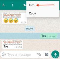 Cara Cek Chatmu di Grup WhatsApp Sudah Dibaca atau Belum