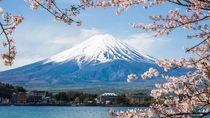Tahun 2020, Ada 100.000 Tiket Pesawat Gratis ke Jepang