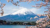 Mendaki Gunung Fuji Tak Lagi Gratis