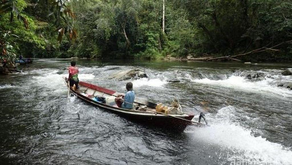 Menembus Lebatnya Hutan, Petualangan ke Jantung Borneo