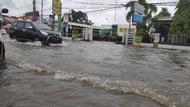 Ribuan Hektare Sawah di Sulsel Rusak Akibat Banjir
