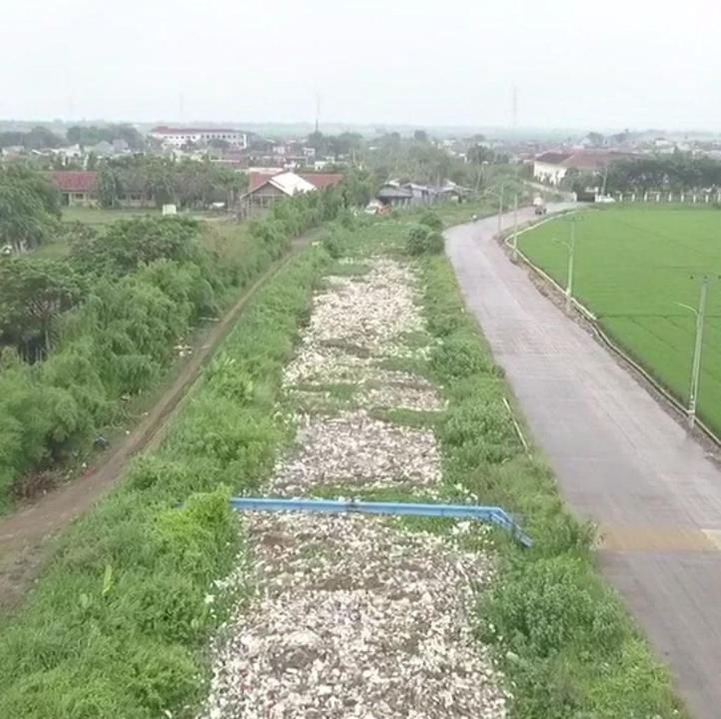Masih di Bekasi, Lautan Sampah Kali Ulu Nan Merusak Pemandangan