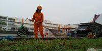 Menjumpai Sellha, Pasukan Oranye di Jakut yang Viral Dipuji Cantik