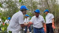 Pertamina EP Salurkan 5.000 Bibit Mangrove dan 2 Perahu di Surabaya