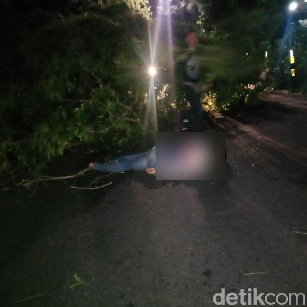 Pohon Tumbang di Blitar Timpa Pemotor Hingga Tewas