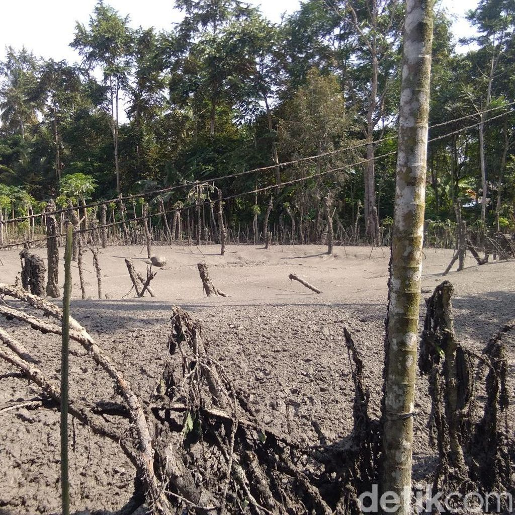 Semburan Lumpur Bercampur Gas di Aceh Utara Berhenti