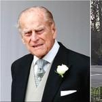 Kecelakaan, SIM Pangeran Philip Dipertanyakan