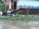 Kerap Dilanda Banjir, Warga Sering Tangkap Ikan di Dalam Rumah