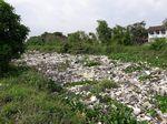 Duh! Kali Cibalok Bekasi Diselimuti Sampah dan Eceng Gondok