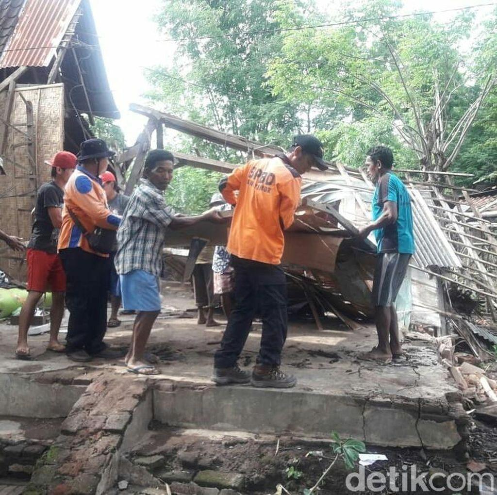 8 Rumah Warga di Situbondo Rusak Tertimpa Pohon Tumbang