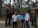 Pertamina Jaga Kelestarian Gajah Sumatera dan Elang Bondol