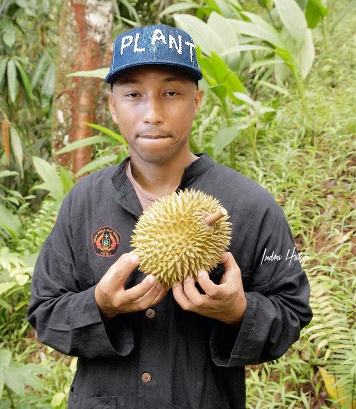 Pharrel William udah kaya pedagang duren belum? arel suka MADU (Mabok Duren), tulis Indra. Foto: Instagram indra.hakim
