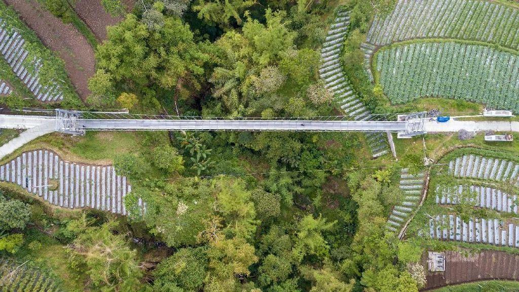 Diganti Baru, Jembatan Indiana Jones di RI Mulai Lenyap