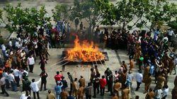 Aparat Musnahkan Ganja dengan Cara Dibakar, Apa Tidak Bikin Mabuk?