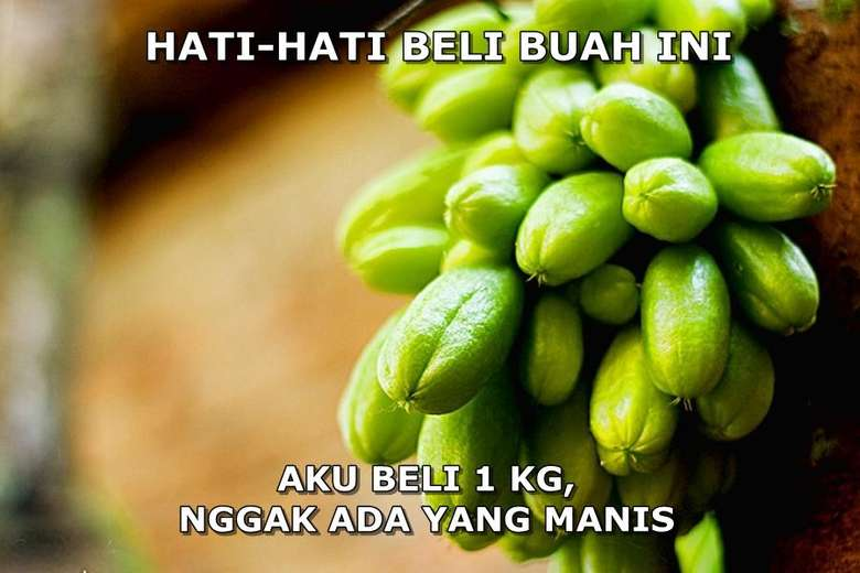 Ada yang tahu buah ini? Buah belimbing wuluh ini memang punya rasa asam jadi mau beli satu buah atau sekilo tetap saja semuanya asam. Foto: Istimewa