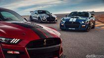 Tenaga Ford Mustang yang Satu Ini Sangat Gila!