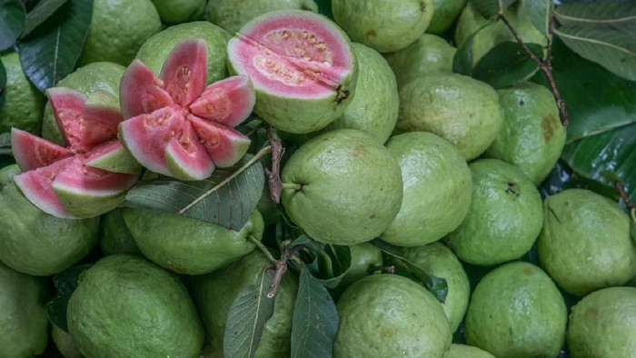 Fresh Red Guava for sale at Hues market in Vietnam. A few Guava were cut open to display their beautiful pink interior.
