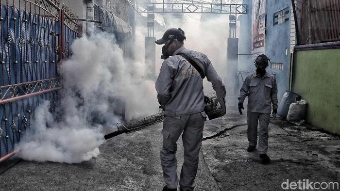 Demam berdarah dengue masih mengancam (Foto: Pradita Utama)