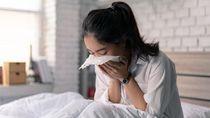 WHO Sebut Pandemi Flu Tidak Bisa Dihindari, Dunia Harus Siap-siap
