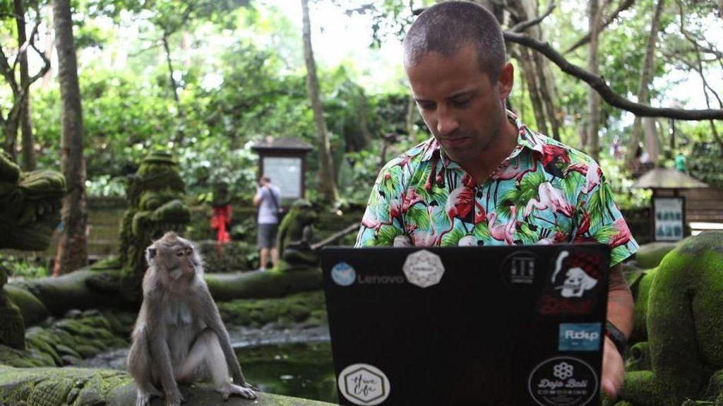 Sisi Lain Bali, Jadi Kantor Jarak Jauh Turis