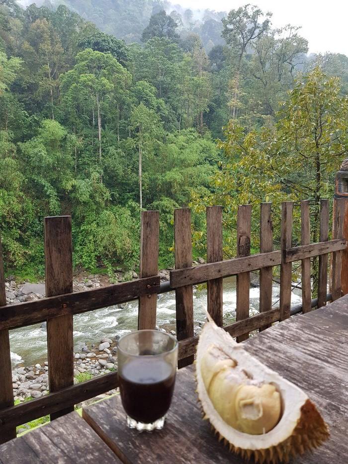 Saat berada di Desa Lolong, Pekalongan, Rocky menikmati segelas kopi hangat dengan buah eksotik beraroma khas. Ya, apalagi kalau bukan duren! Foto: Twitter Rocky Gerung