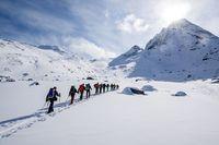Turis yang dapat trekking ke alam liar Greenland (iStock)