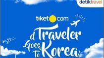 Tiket Pesawat Lagi Mahal, Eh Ada Liburan Gratis ke Korea Selatan