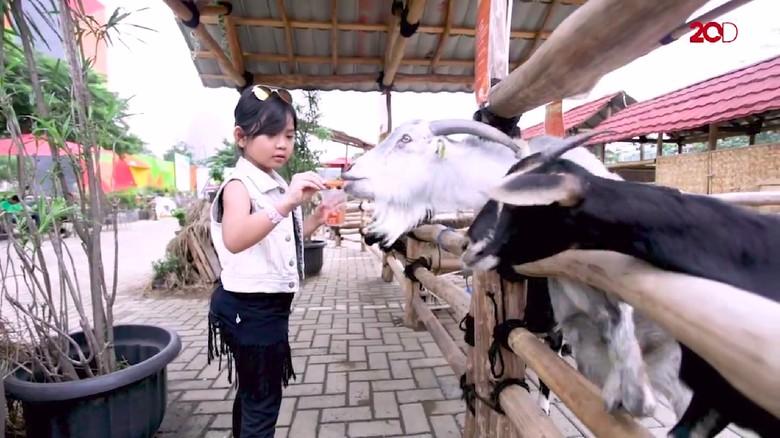 AnakPedia! Serunya Kenalkan Kegiatan Alam pada Anak Sejak Dini/Foto: 20D