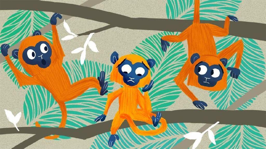 Monyet Murung di Lereng Gunung