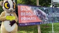 Serunya Edukasi Primata di Taman Hutan Kota