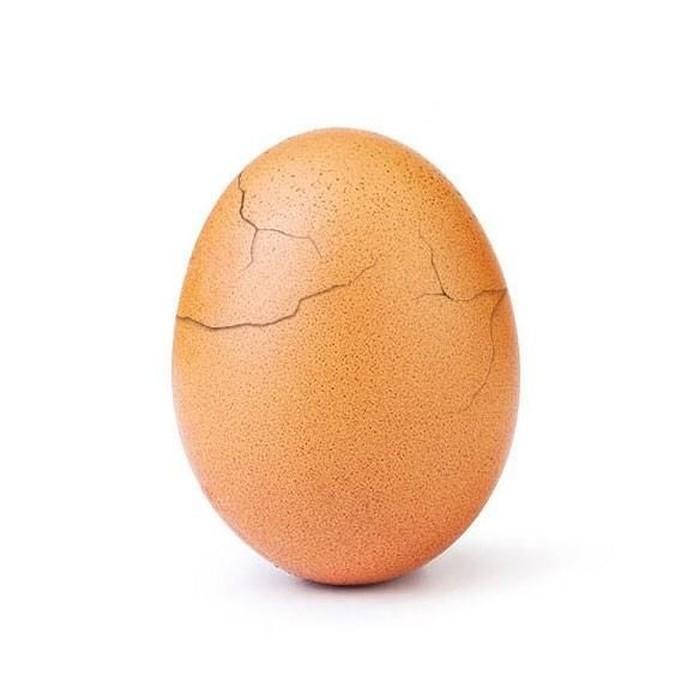 Telur Terpopuler di Instagram 'Pecah' di Bawah Tekanan