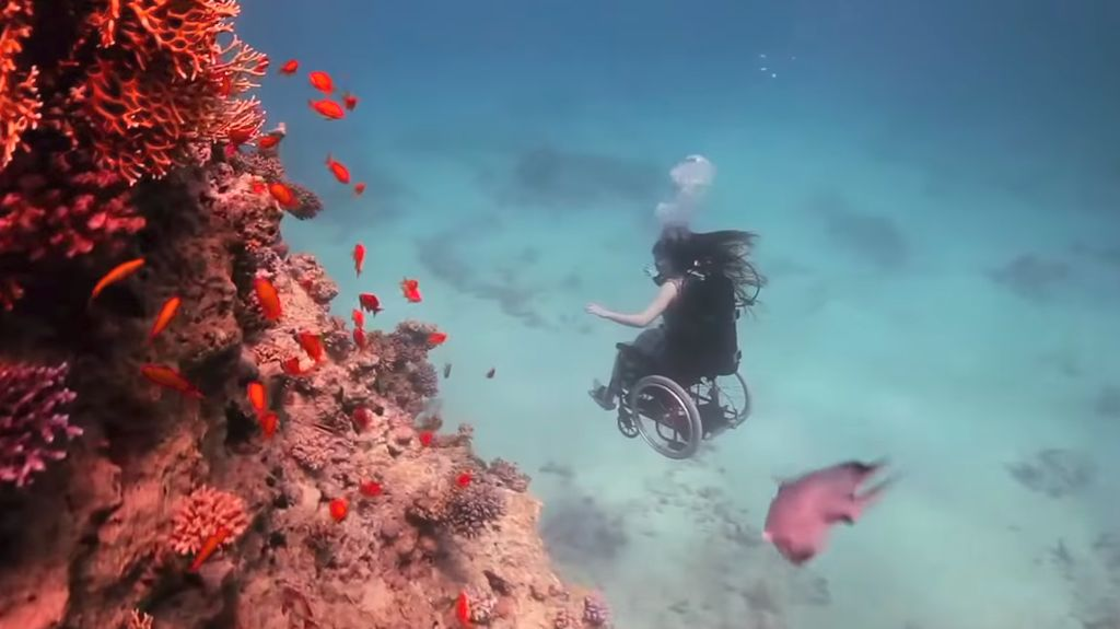 Terpana Melihat Pemandangan Bawah Laut, Menyelam di Atas Kursi Roda