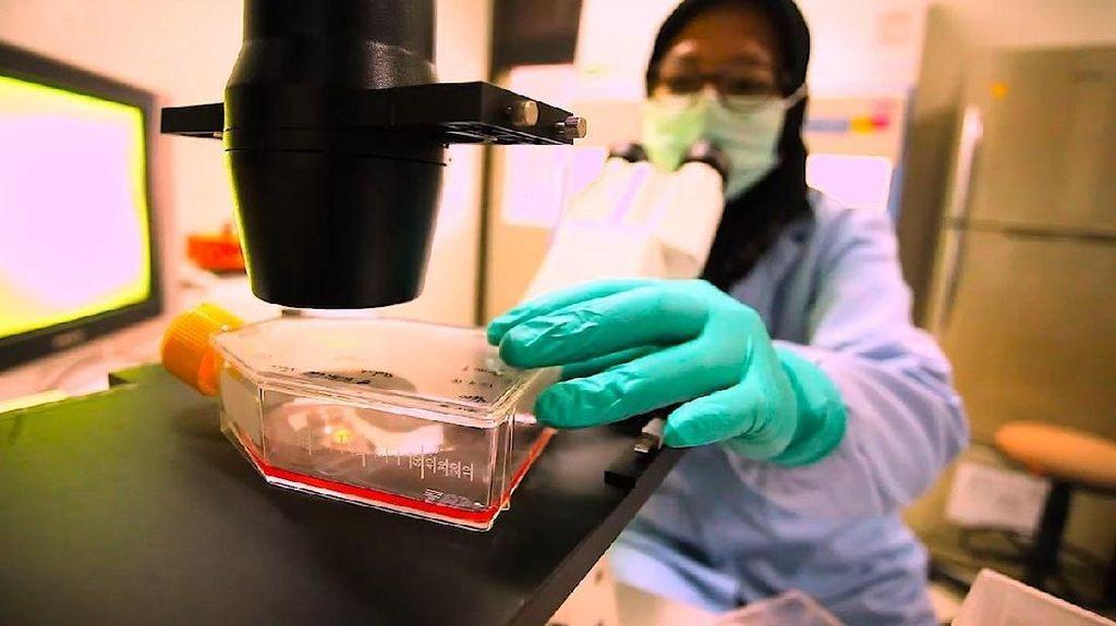 Penampakan Test Pack Diagnosis DBD yang Viral di Medsos