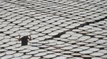 Wow! Gaplek Singkong Sukabumi Tembus Pasar China