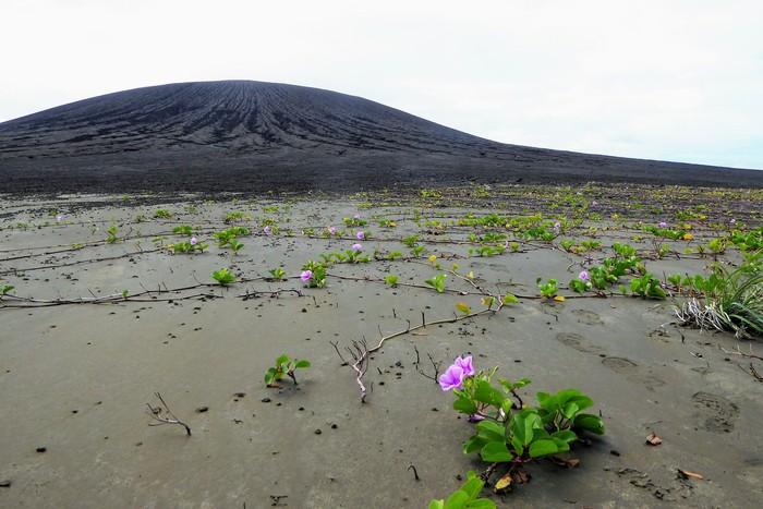 Pulau vulkanis misterius di sekitar Tonga. Foto: NASA