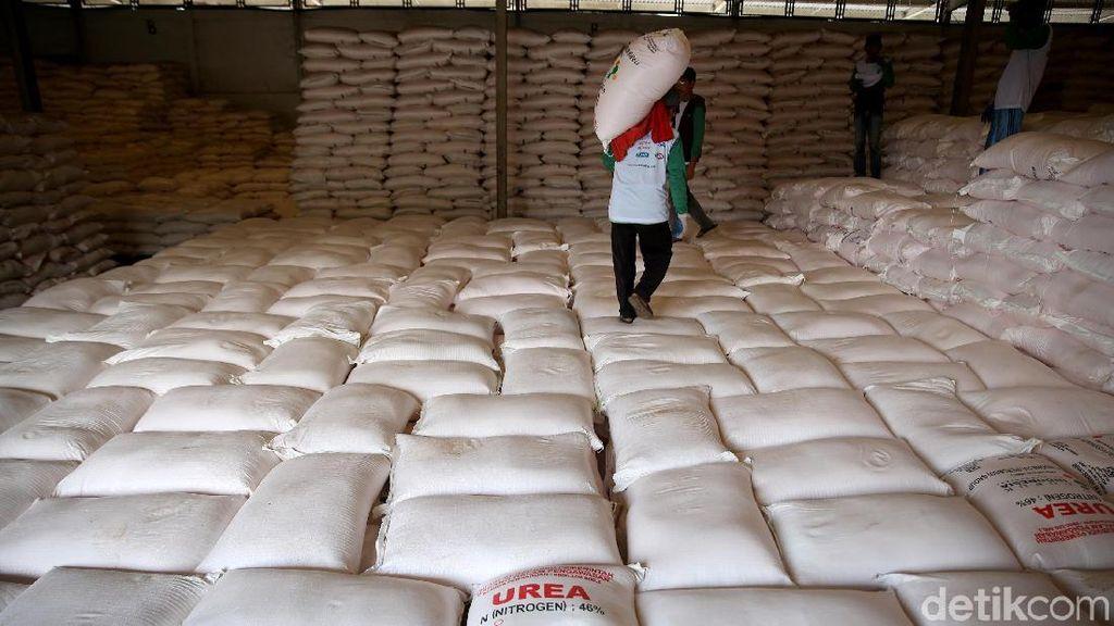 Antisipasi Kebutuhan Petani, 287.000 Ton Pupuk Non Subsidi Disiapkan