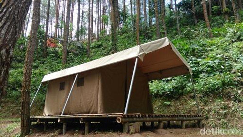 Glamping atau Glamorous Camping membuat para wisatawan tidak perlu repot menyiapkan peralatan memasak sendiri atau bingung saat akan ke kamar mandi (Rinto/detikTravel)