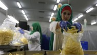 Ada Pabrik Kentang Goreng, Warga Gaza Tak Nganggur Lagi