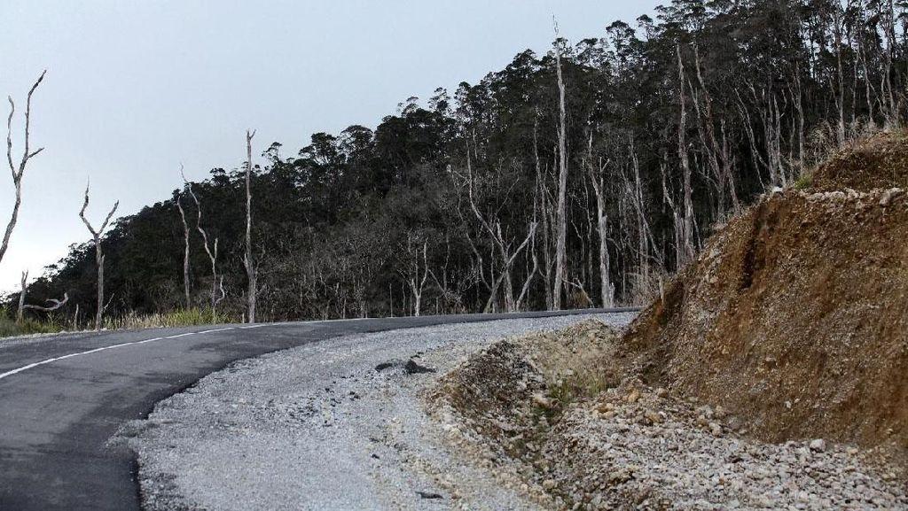 Medan Berat, Jalan Trans Papua dan Perbatasan Gagal Tuntas Tahun Ini