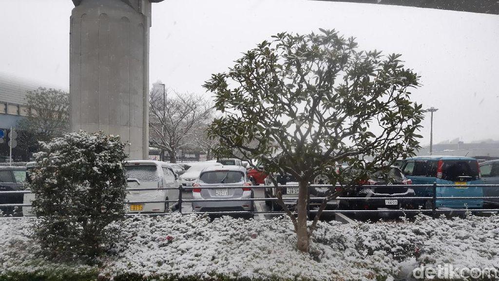 Potret Langka Ketika Tokyo Tertutup Salju