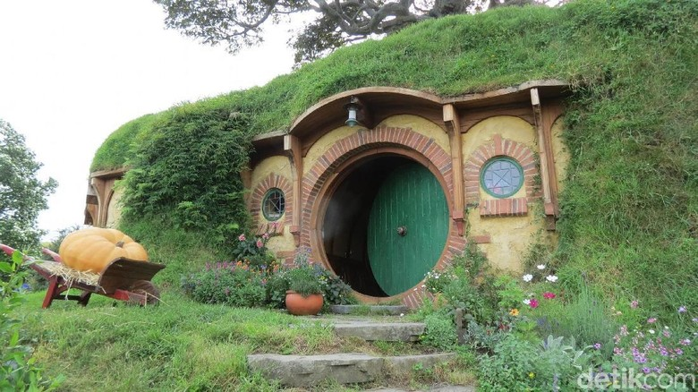 Desa Hobbiton yang asli di Selandia Baru (Fitraya Ramadhanny/detikTravel)