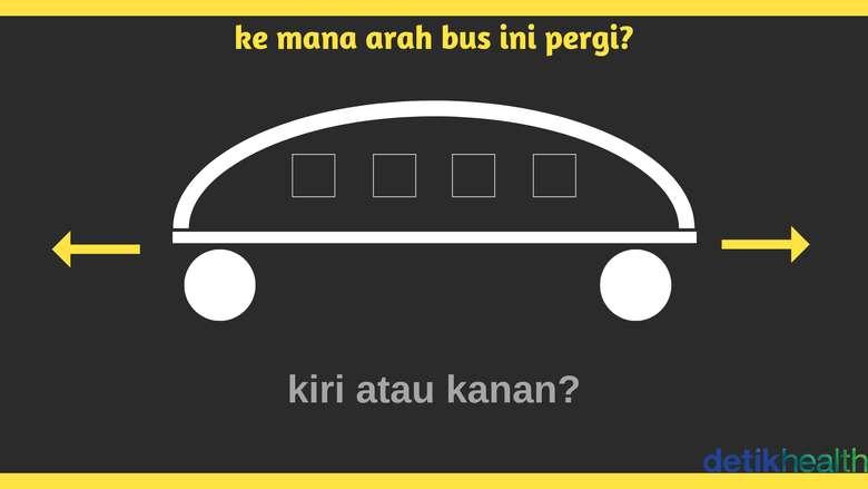 Anggap saja kalau itu gambar bus. (Foto: detikHealth)